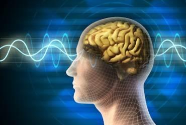 gelombang otak sains pada manusia